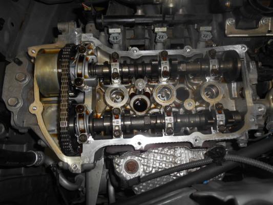 DSCN5555