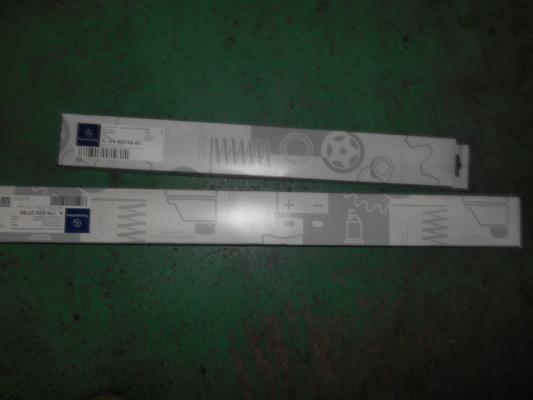 DSCN6877